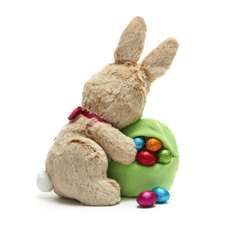 Limited Edition 2017 Plush Easter Bunny