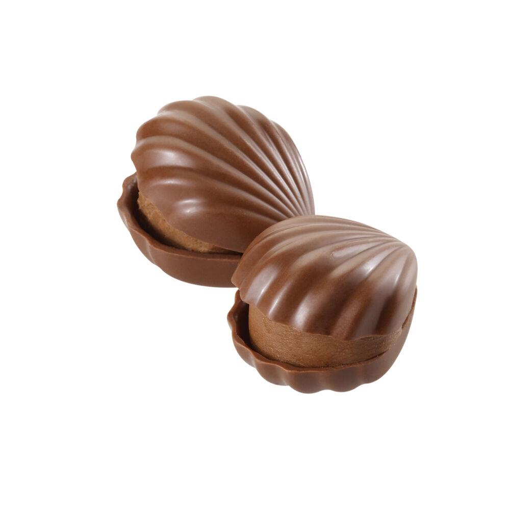 Milk Chocolate Hazelnut Oyster