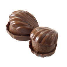Milk Chocolate Pecan Oyster