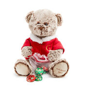 Limited Edition 2017 Holiday Plush Bear