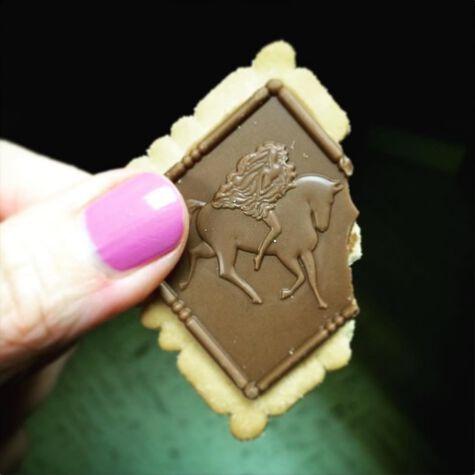 Signature Milk Chocolate Biscuits, 12 pc.