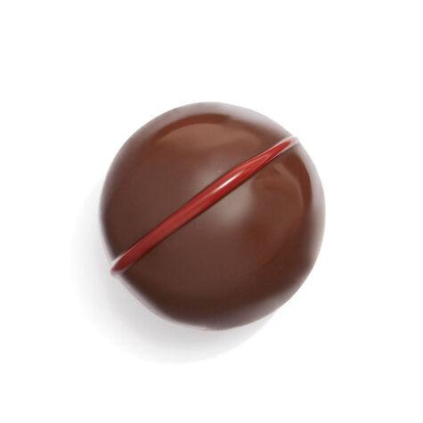 Double Chocolate Raspberry Truffle