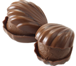 Milk Chocolate Pecan Oyster Chocolate Piece